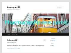 kamagra-100.net review